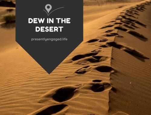 Dew in the Desert